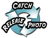 Catch-Photo-Release - Ohio Steelheaders